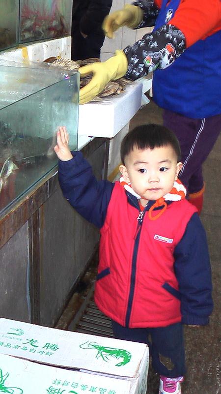 09春节假北京生活录(2)多储食品但少出门 - sz1961sy - 沈阳(sz1961sy)的网易博客