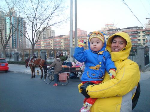 2009年元旦北京街头闹马车与家乐福热闹 - sz1961sy - 沈阳(sz1961sy)的网易博客