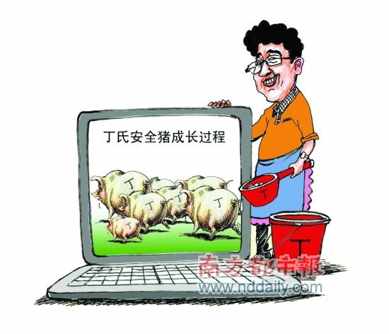 给猪CEO丁磊挑刺(1)养猪不同玩Game - sz1961sy - 沈阳(sz1961sy)的网易博客